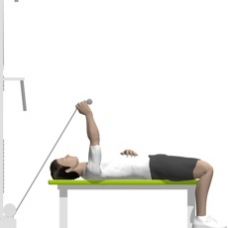 Cable Triceps Extension, Lying, One Arm Ending Position