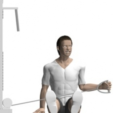 Cable External Rotation, Seated Ending Position