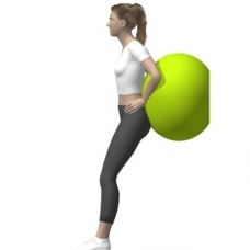 Fitness Ball Squat, Wall Starting Position