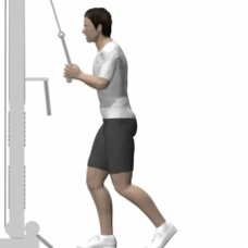 Cable Pushdown, Rope Starting Position