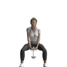 Dumbbell Squat, Single Dumbbell Ending Position