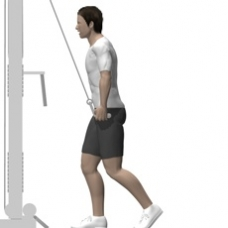 Cable Pushdown, Rope Ending Position
