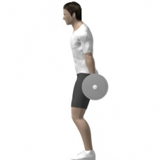 Barbell Squat, Hack Starting Position