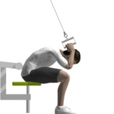 Crunch Seated Cable Exercise Strength Training