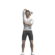 Dumbbell Triceps Extension, Standing, One Arm Starting Position
