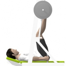 Sled Vertical Leg Press Starting Position