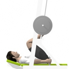 Sled Vertical Leg Press Ending Position