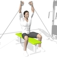 Shoulder Press, Seated