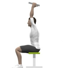 Weight Plate Triceps Extension, Seated Starting Position