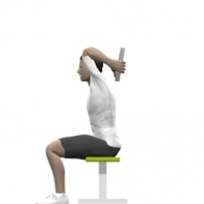 Weight Plate Triceps Extension, Seated Ending Position
