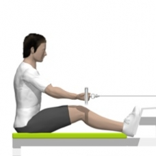 Cable Seated Row, Reverse Grip Starting Position