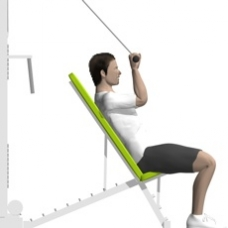 Cable Triceps Extension, Incline Starting Position