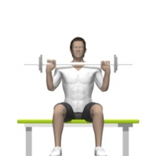 Barbell Shoulder Press, Seated Starting Position
