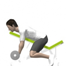 Barbell Curl, Incline Starting Position