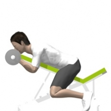 Barbell Curl, Incline Ending Position