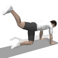 Hip Extension, Quadruped