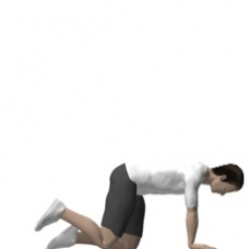Mat Hip Extension, Quadruped Starting Position