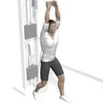 Cable Triceps Extension, Standing Starting Position