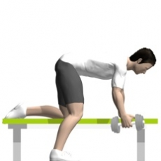 Dumbbell Row, Bent-over Starting Position