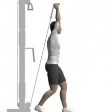 Cable Triceps Extension, Standing Ending Position