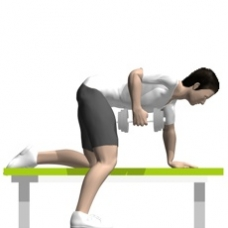 Dumbbell Row, Bent-over Ending Position