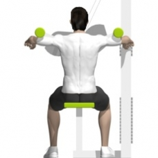 Lever Lateral Raise Ending Position
