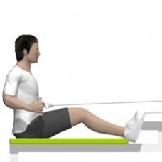 Cable Seated Row, Hip Extension Ending Position