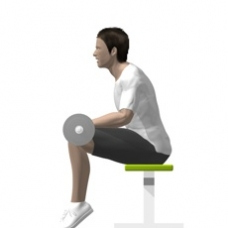 Barbell Calf Press, Seated Ending Position