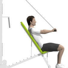 Cable Triceps Extension, Incline Ending Position