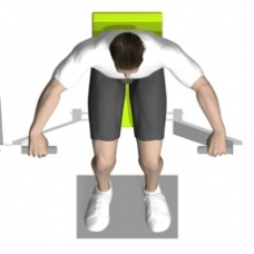 Lever Chest Press Ending Position