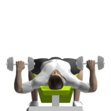 Dumbbell Bench Press, Decline Starting Position