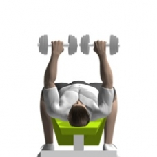Dumbbell Bench Press, Decline Ending Position