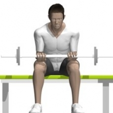 Barbell Wrist Extension Ending Position