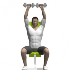 Kurzhantel Arnold Press Endposition