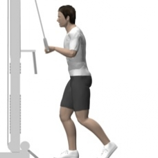 Cable Pushdown, One Arm Starting Position
