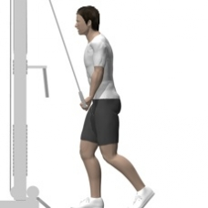 Cable Pushdown, One Arm Ending Position