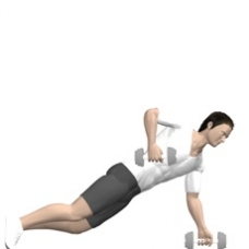 Dumbbell Renegade Row Starting Position