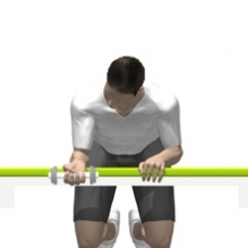 Dumbbell Wrist Curl Starting Position