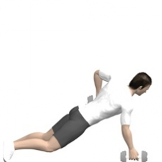 Dumbbell Renegade Row Ending Position