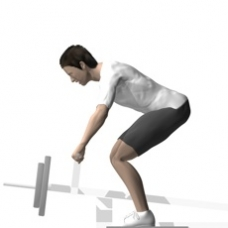 Lever Row, T-Bar, Bent-over Starting Position