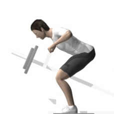 Lever Row, T-Bar, Bent-over Ending Position