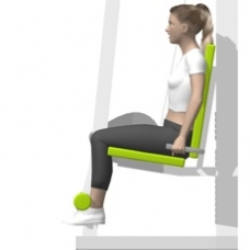 Lever Leg Extension Starting Position