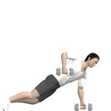 Dumbbell Renegade Row, Push-up Starting Position
