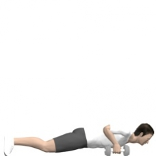 Dumbbell Renegade Row, Push-up Ending Position