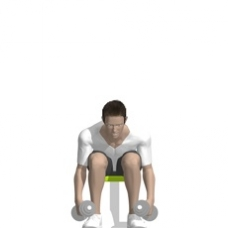 Dumbbell Reverse Fly, Seated, Bent Over Starting Position