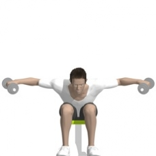 Dumbbell Reverse Fly, Seated, Bent Over Ending Position