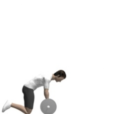 Barbell Roll-out Starting Position