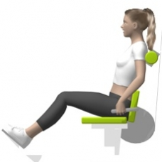 Lever Back Extension, Seated Ending Position