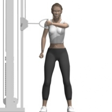 Cable Reverse Fly, Standing, One Arm Starting Position