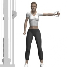 Cable Reverse Fly, Standing, One Arm Ending Position